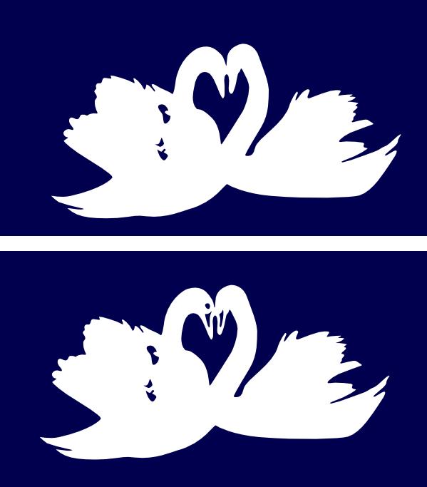 Swansformingheart