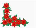 Poinsettiacorner