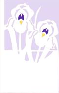 Iris2CARDOUTLINE