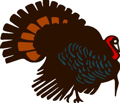 Turkeyonly