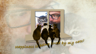 Free svg, dxf, png, gsd Cats on Window sill design for Time Capsule Memories slideshow services website